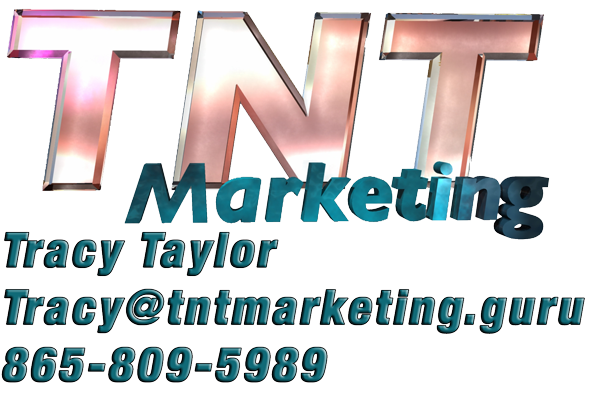 TNT Marketing Guru logo