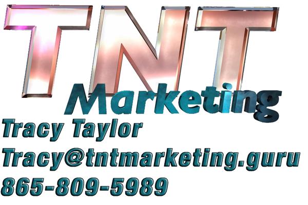 TNT Marketing Guru logo